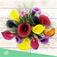 bouquet-de-callas-multicolores-200-4208.jpg