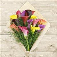 bouquet-de-callas-multicolores-200-6519.jpg