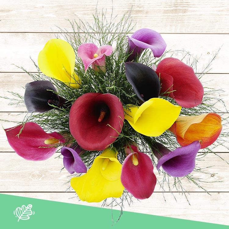 bouquet-de-callas-multicolores-xl-200-4206.jpg