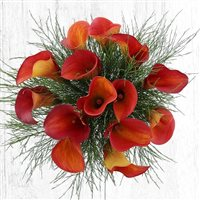 bouquet-de-callas-orange-xl-200-5667.jpg