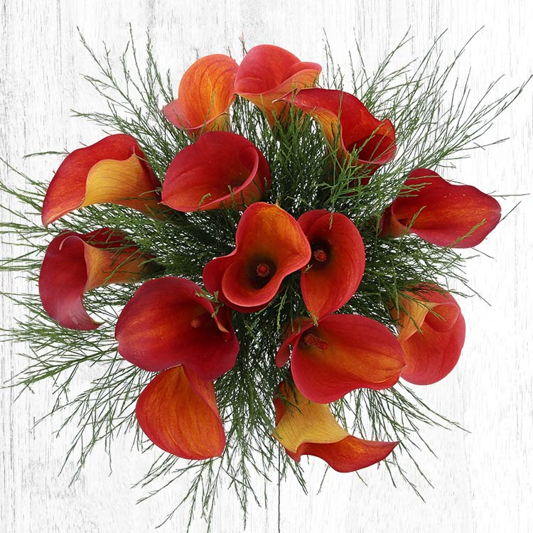 bouquet-de-callas-orange-xl-750-5667.jpg