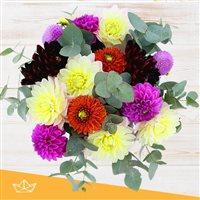 bouquet-de-dahlias-multicolores-200-5179.jpg