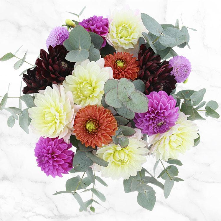 bouquet-de-dahlias-multicolores-200-2556.jpg