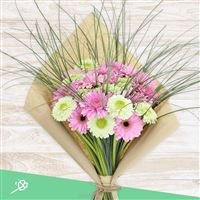 bouquet-de-germinis-roses-xxl-200-4342.jpg