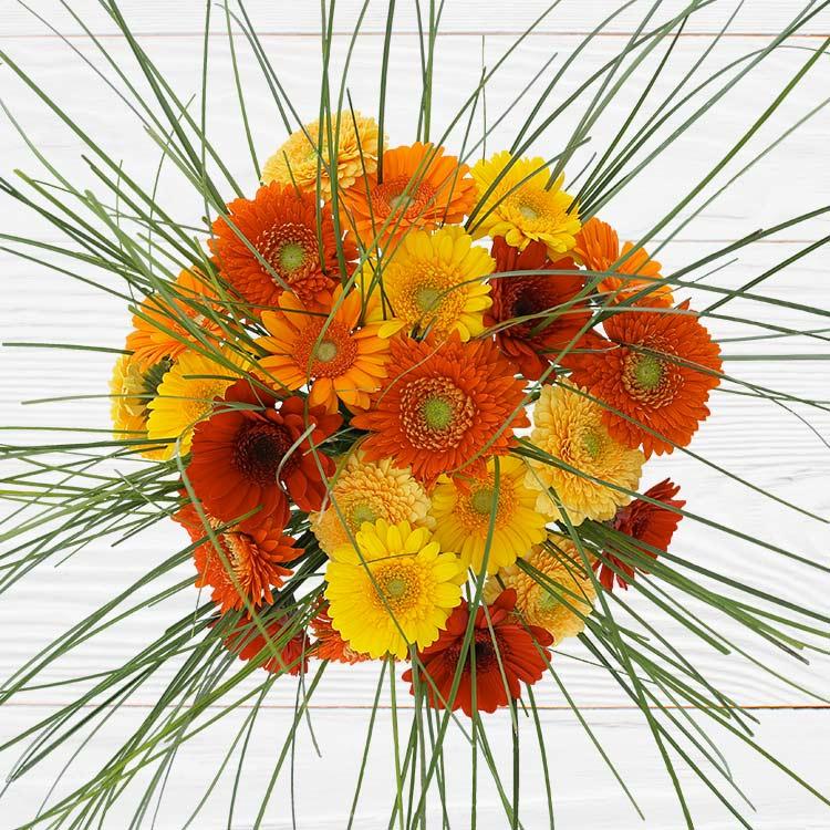 bouquet-de-germinis-tons-chauds-750-2529.jpg
