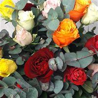 bouquet-de-grandes-roses-200-6693.jpg