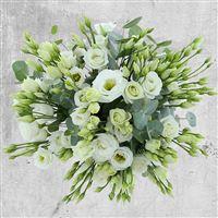 bouquet-de-lisianthus-blancs-et-son--200-2721.jpg