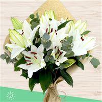 bouquet-de-lys-blancs-xl-200-4193.jpg