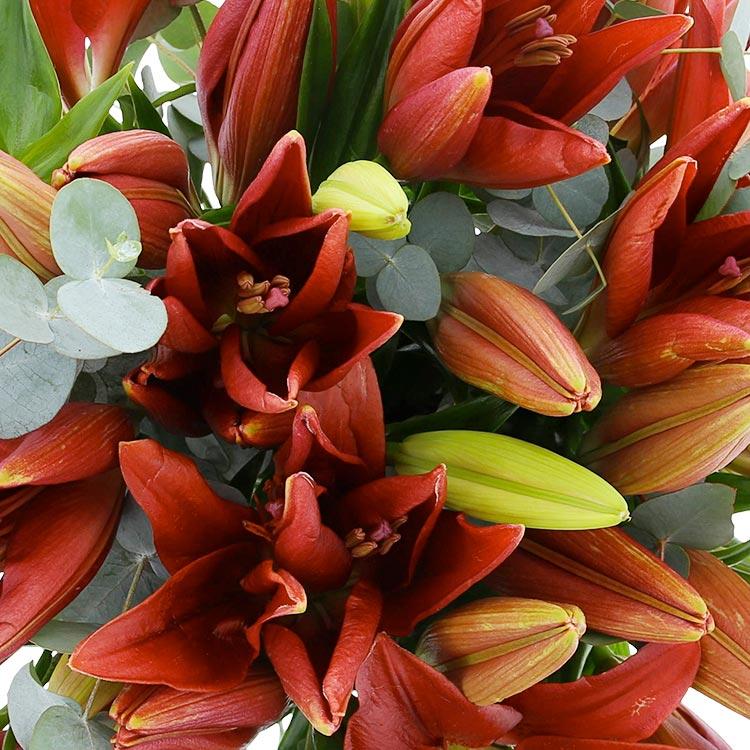 bouquet-de-lys-rouges-xl-750-3047.jpg