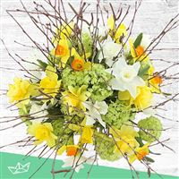 bouquet-de-narcisses-variees-xxl-200-4164.jpg