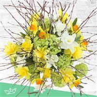 bouquet-de-narcisses-varies-et-son-v-200-4228.jpg