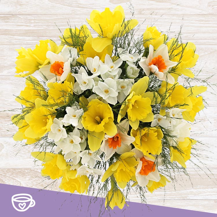 bouquet-de-narcisses-varies-et-son-v-200-3935.jpg