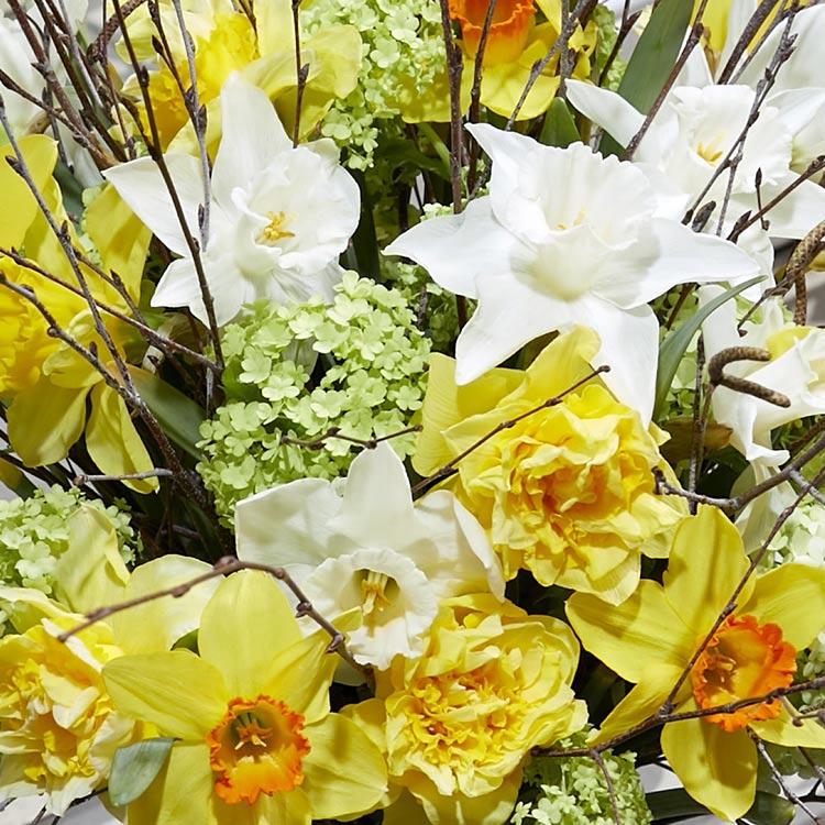 bouquet-de-narcisses-varies-et-son-v-750-4227.jpg