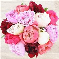 bouquet-de-pivoines-200-6739.jpg