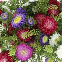 bouquet-de-reine-marguerites-multico-200-2542.jpg
