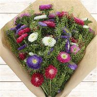 bouquet-de-reine-marguerites-multico-200-2543.jpg