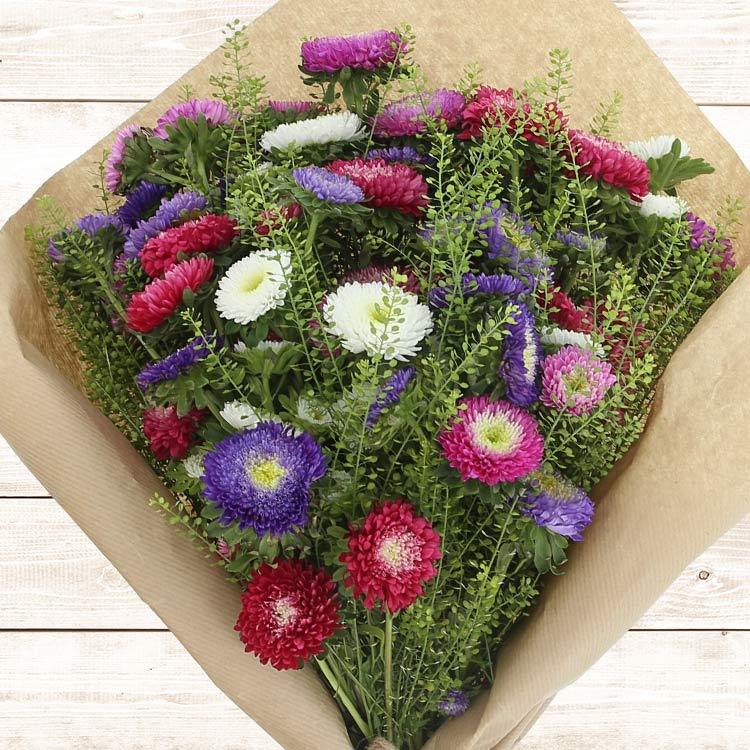 bouquet-de-reine-marguerites-multico-200-2537.jpg