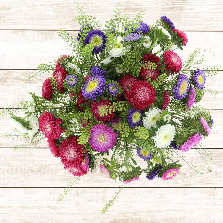 bouquet-de-reine-marguerites-multico-750-2541.jpg