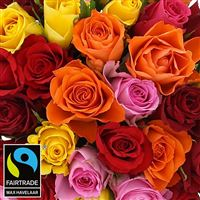 bouquet-de-roses-multicolores-200-3000.jpg