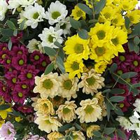 bouquet-de-santini-multicolores-et-s-200-2744.jpg