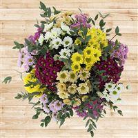 bouquet-de-santini-multicolores-xxl--200-2749.jpg