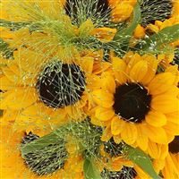 bouquet-de-tournesols-200-2563.jpg