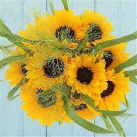 bouquet-de-tournesols-200-2565.jpg