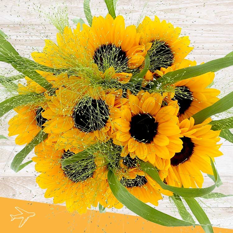 bouquet-de-tournesols-et-son-vase-200-5168.jpg