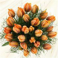 bouquet-de-tulipes-princesse-irene-200-3468.jpg