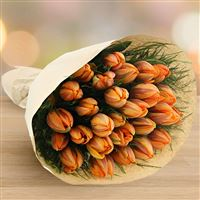 bouquet-de-tulipes-princesse-irene-x-200-3466.jpg