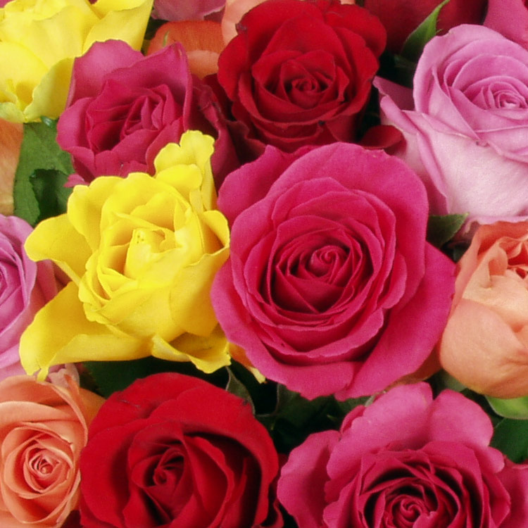 bouquet-sur-mesure-200-464.jpg