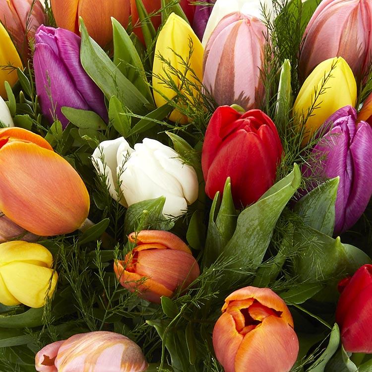 brassee-de-tulipes-variees-200-3972.jpg