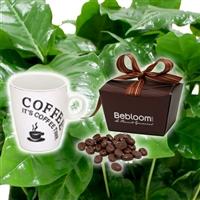 cafeier--mug-et-ses-grains-de-cafe-200-1112.jpg