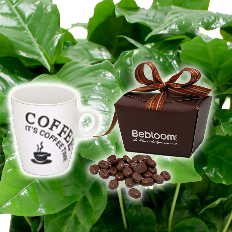 cafeier--mug-et-ses-grains-de-cafe-750-1112.jpg