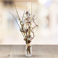cotton-wood-200-3995.jpg
