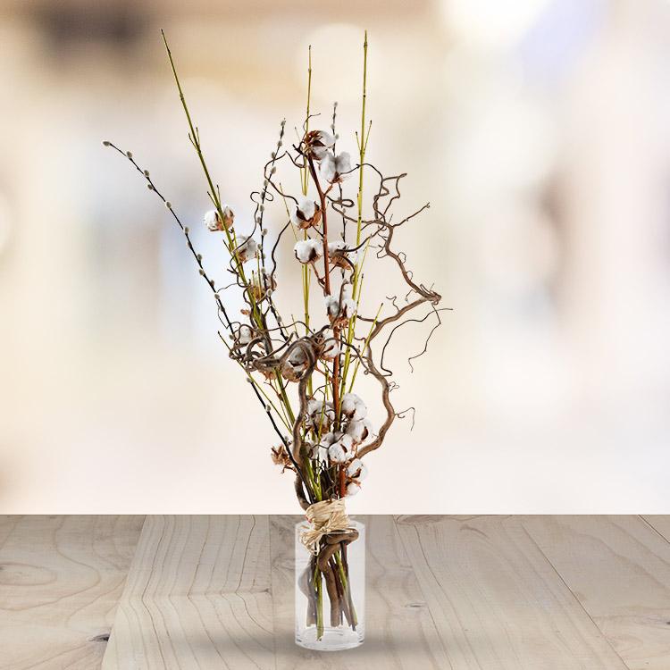 cotton-wood-750-3995.jpg