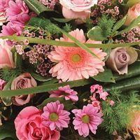 coussin-rose-200-1448.jpg