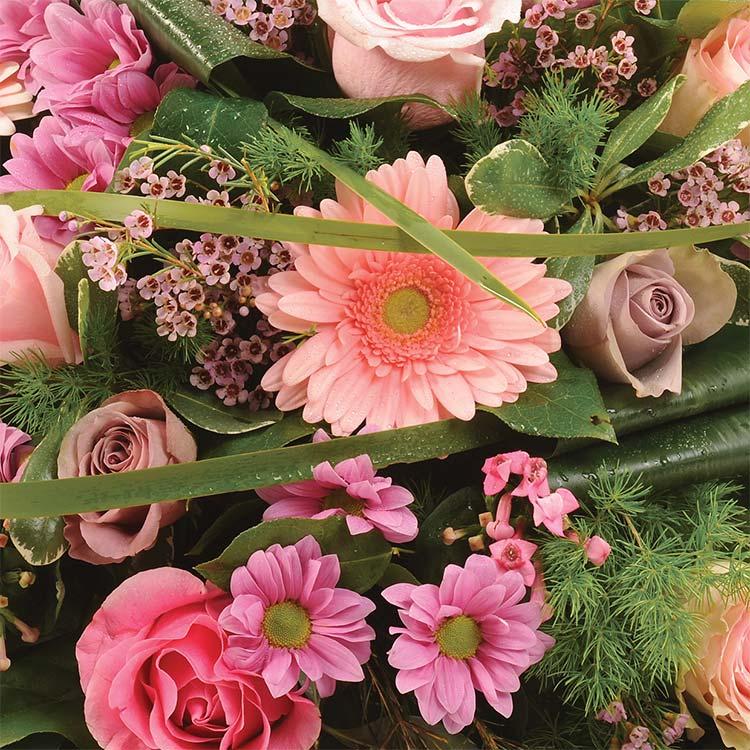 coussin-rose-750-1448.jpg