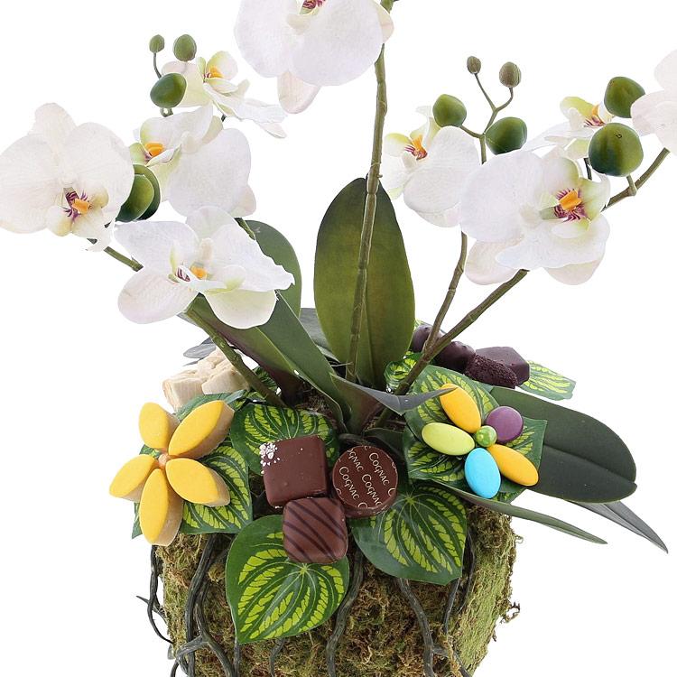 design-d-orchidee-gourmande-xl-200-2218.jpg