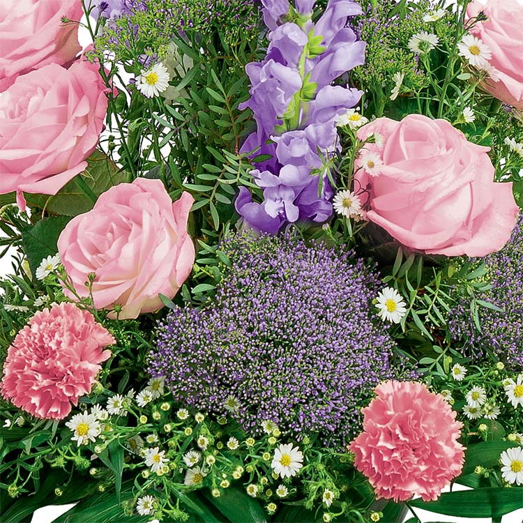 dignite-rose-200-1605.jpg