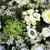 douceur-d-automne-200-5521.jpg