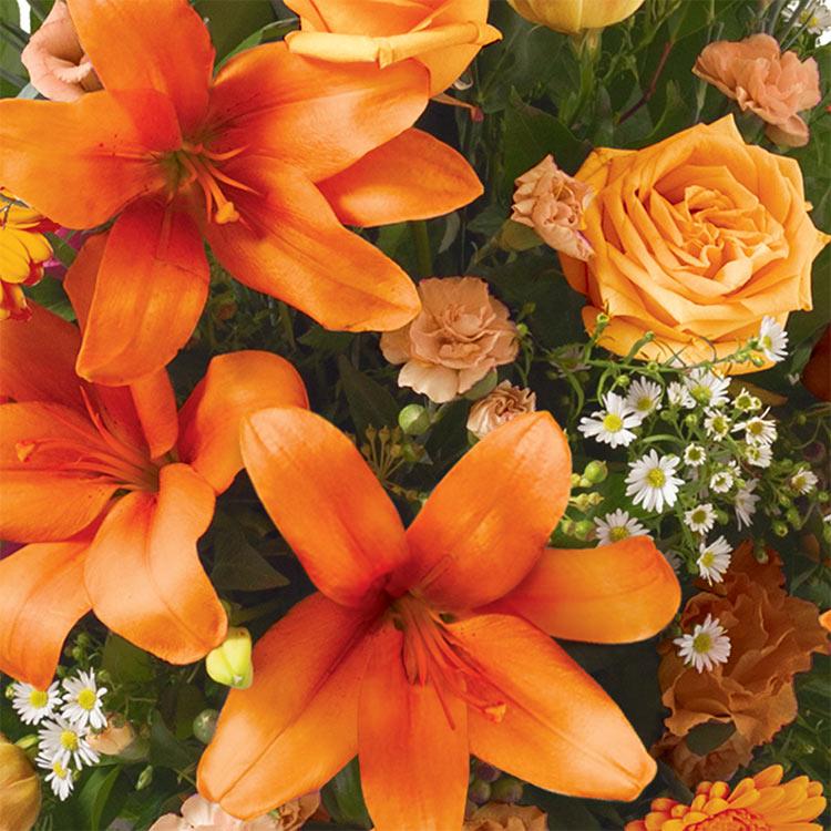 estime-orange-750-1587.jpg