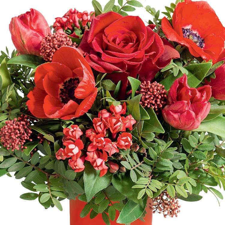 fete-de-noel-et-son-vase-offert-200-2152.jpg