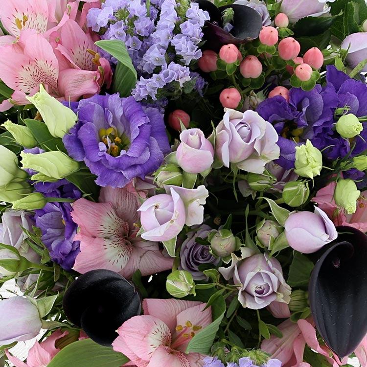 fresh-color-xl-750-3485.jpg