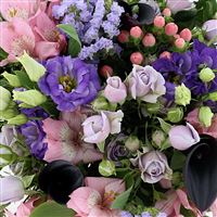 fresh-color-xxl-200-3482.jpg