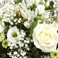 fresh-spring-xl-et-son-ourson-200-4288.jpg