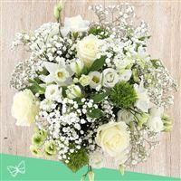 fresh-spring-xl-et-son-ourson-200-4289.jpg