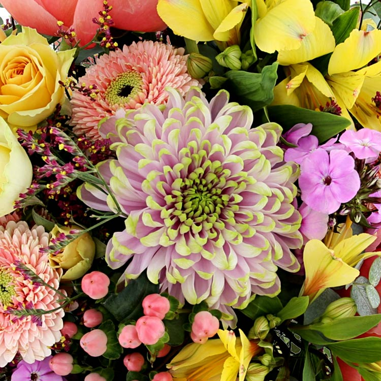 fresh-symphonie-et-son-vase-200-4715.jpg