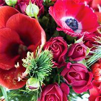happy-reveillon-xl-et-son-vase-200-5929.jpg
