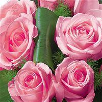 hommage-rose-200-1575.jpg
